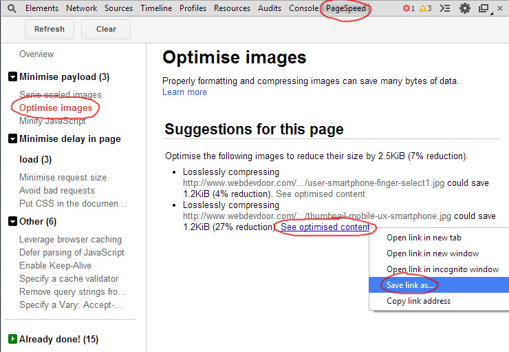 Page Speed Insights Optimised Image
